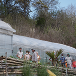 Jardin de Cocagne